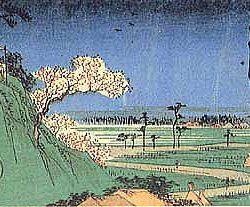 シリーズ「荒川区のオキテ」④:明治神宮や浅草寺もいいけど荒川区でも初詣しましょう