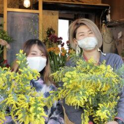春の花、満開! 2月13日(土)限定の花屋が、町屋ニュー阿波屋にオープン